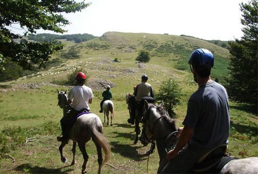 ¡A caballo por la sierra de Aralar! Paseo de 2 horas a caballo